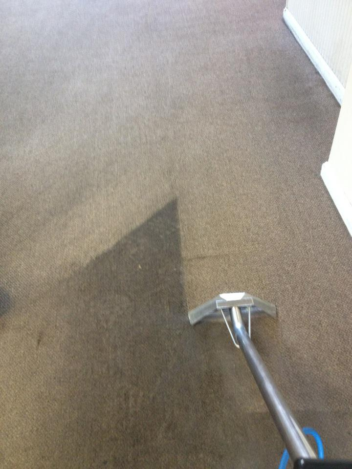 Paramount Carpet Cleaning & Restoration Services